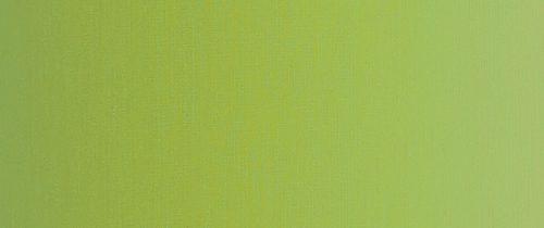 44-grasgrün_webshop